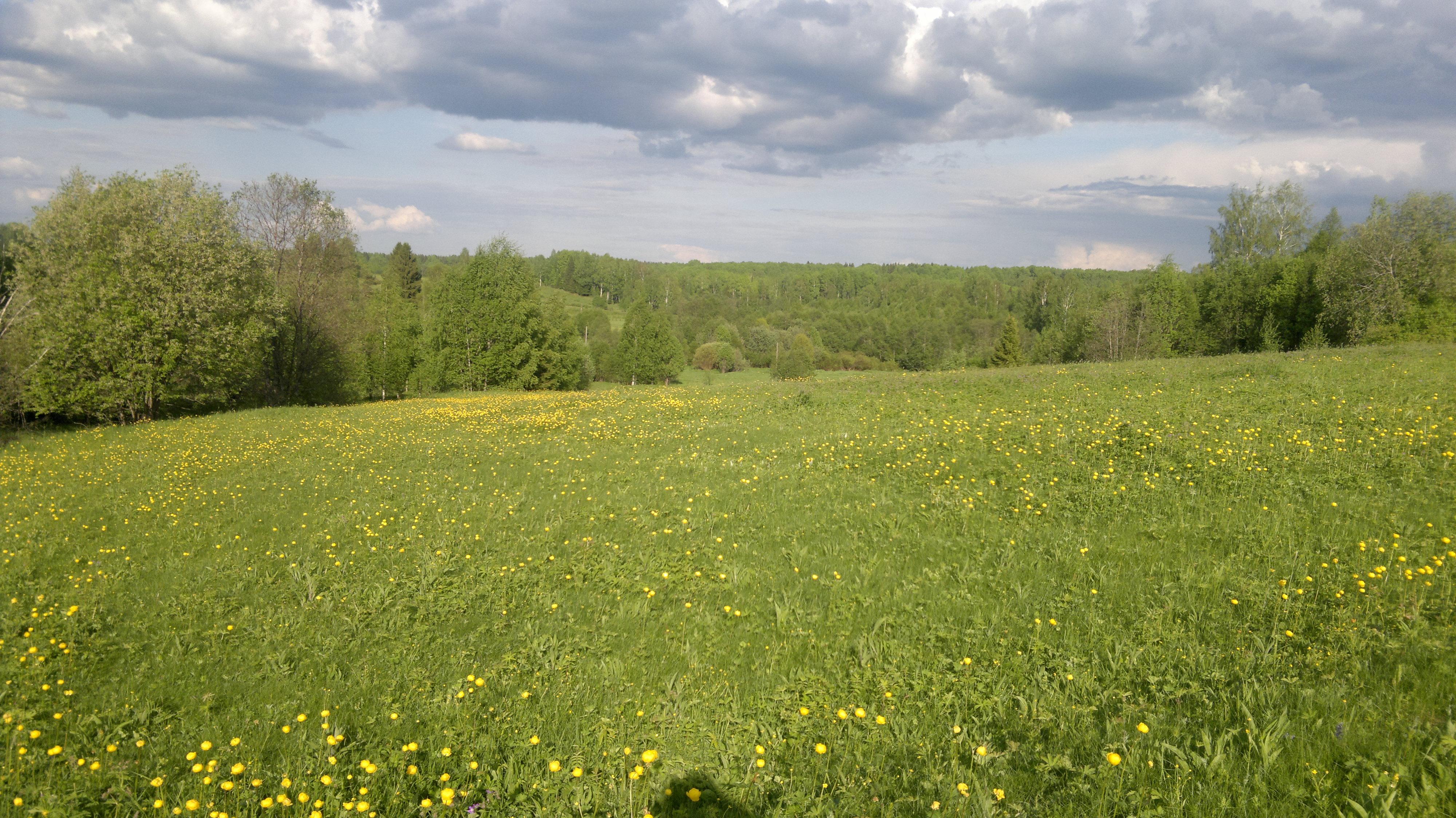 2012-05-27-409